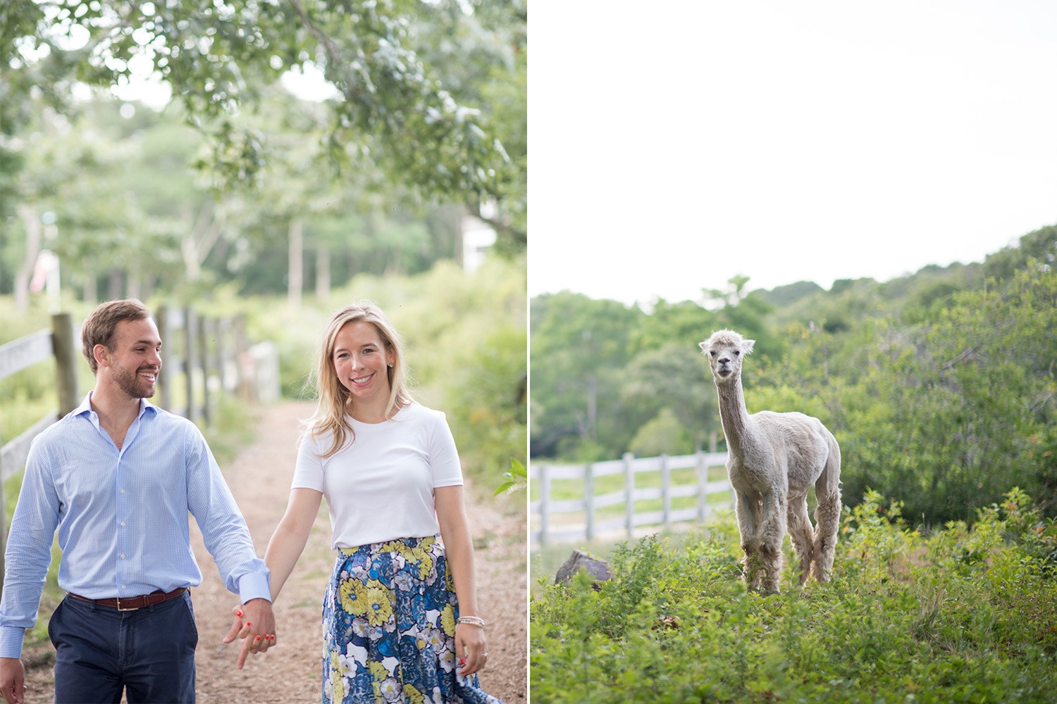 marthas-vineyard-engagement-1