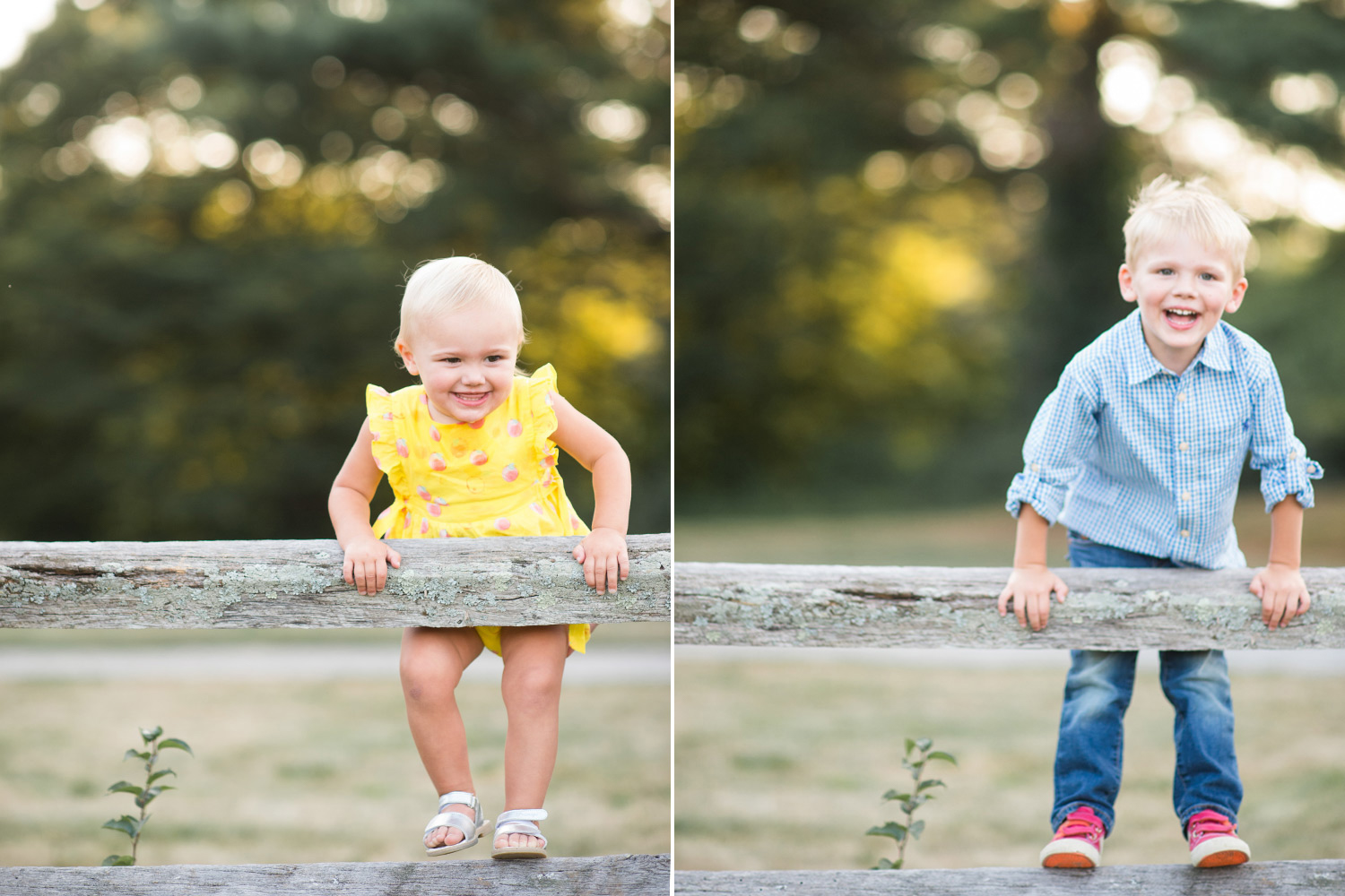 summer-orchard-family-photo-session-boston-13